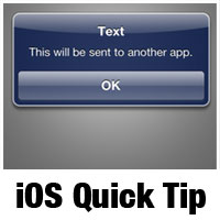 iOS SDK: Working with URL Schemes